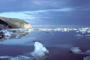 Chukchi-Sea-FWS